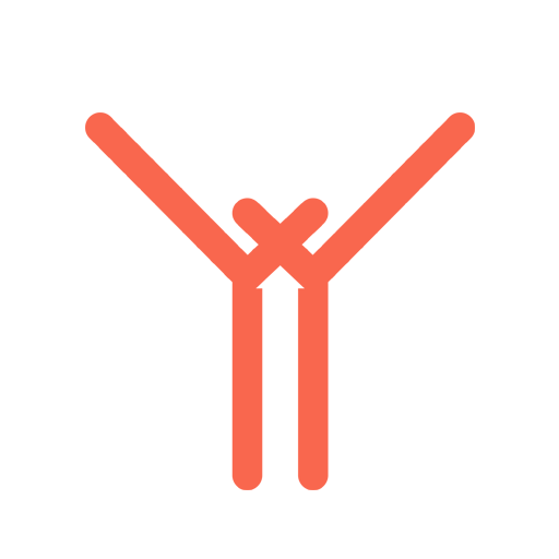 Logo XYStories